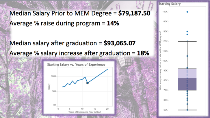 mem median salary info