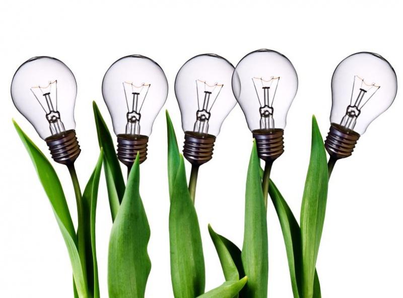 entrepreneurship2.jpg